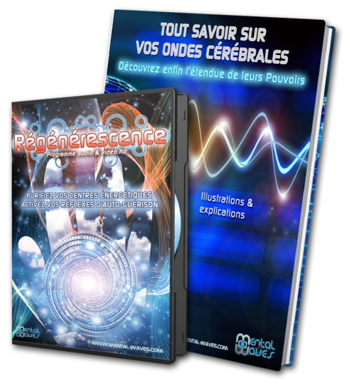 bundle-dvd-ebook-3D